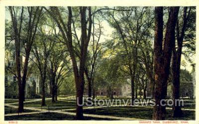 Harvard Yard - Cambridge, Massachusetts MA Postcard