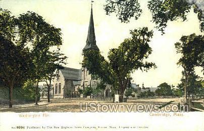 Washington Elm - Cambridge, Massachusetts MA Postcard