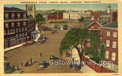 Massachusetts Ave. - Cambridge Postcard