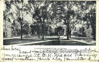 Harvard Yard, Harvard College - Cambridge, Massachusetts MA Postcard