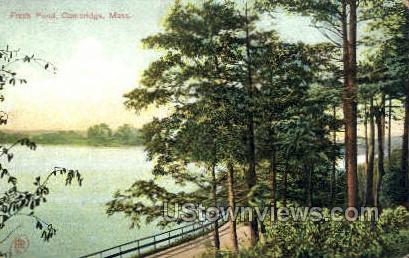 Fresh Pond - Cambridge, Massachusetts MA Postcard