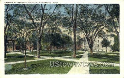 Campus, Harvard College - Cambridge, Massachusetts MA Postcard
