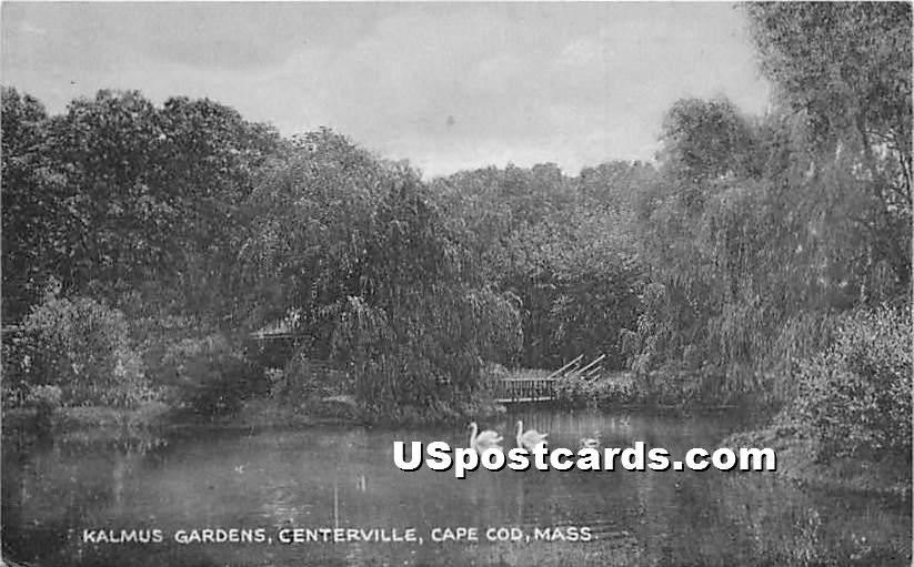 Kalmus Gardens - Centerville, Massachusetts MA Postcard