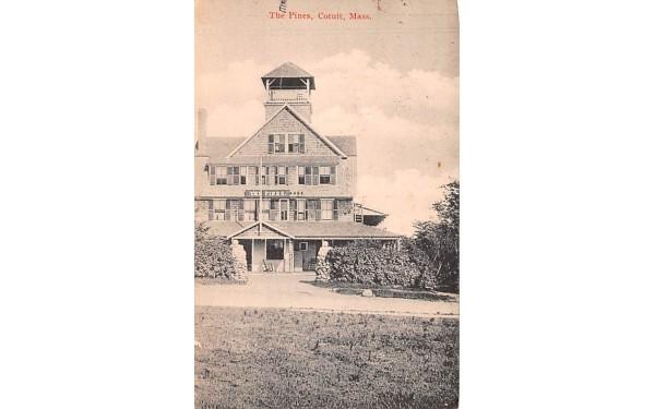 The Pines Cotuit, Massachusetts Postcard