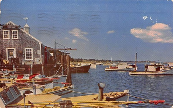 Chatham Fish Pier Massachusetts Postcard