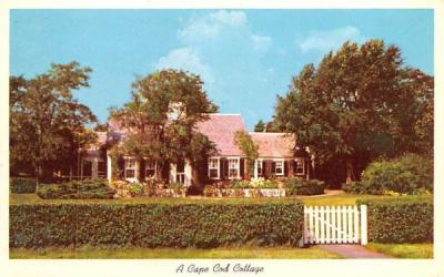 A Cape Cod Cottage Massachusetts Postcard