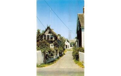 A village lane Cape Cod, Massachusetts Postcard