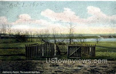 The Endicott Pear Tree - Danvers, Massachusetts MA Postcard