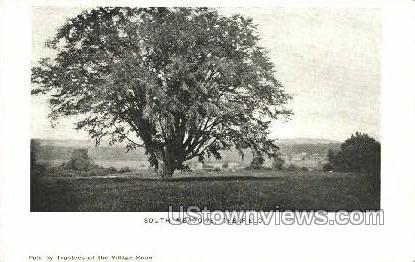 South Meadows - Deerfield, Massachusetts MA Postcard