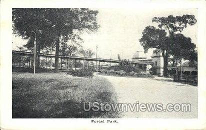 Forest Park - Misc, Massachusetts MA Postcard
