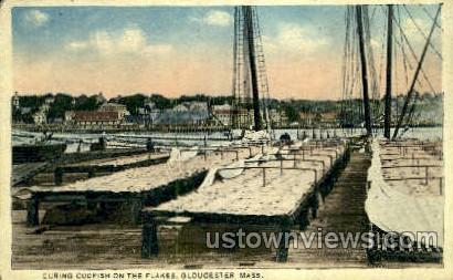 Curing Codfish - Gloucester, Massachusetts MA Postcard