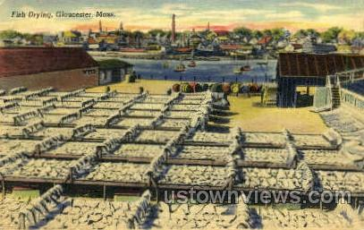 Fish Drying - Gloucester, Massachusetts MA Postcard