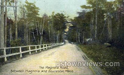 The Magnolia Road - Great Barrington, Massachusetts MA Postcard