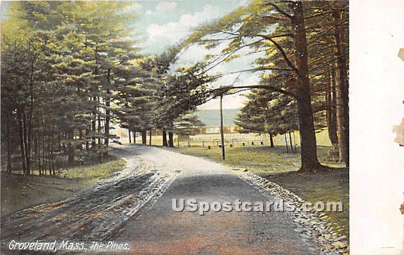 The Pines - Groveland, Massachusetts MA Postcard