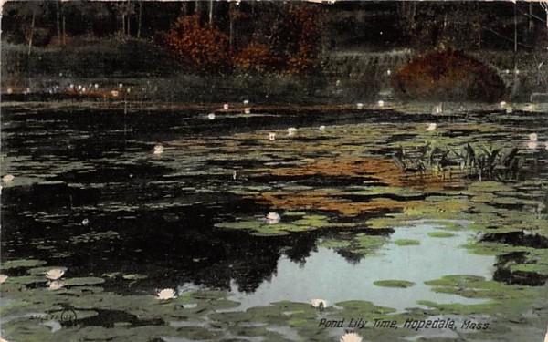 Pond Lily Time Hopedale, Massachusetts Postcard