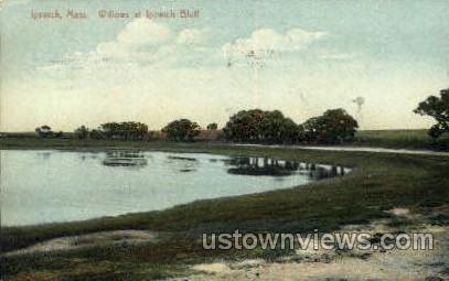 Willows, Ipswich Bluff - Massachusetts MA Postcard