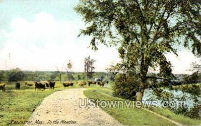 In the Meadow - Lancaster, Massachusetts MA Postcard