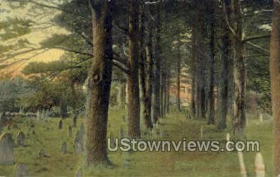 Old Cemetery - Lexington, Massachusetts MA Postcard