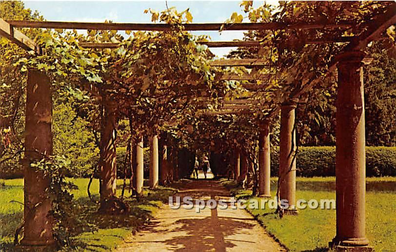 The Grape Arbor - Lenox, Massachusetts MA Postcard