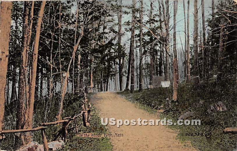 In the Woods - Lynn, Massachusetts MA Postcard