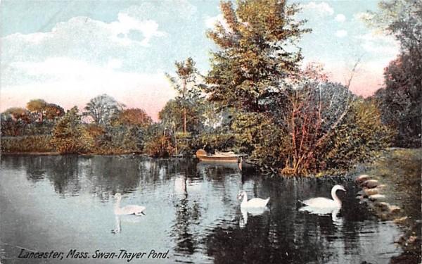 Swan Thayer PondLancaster, Massachusetts Postcard