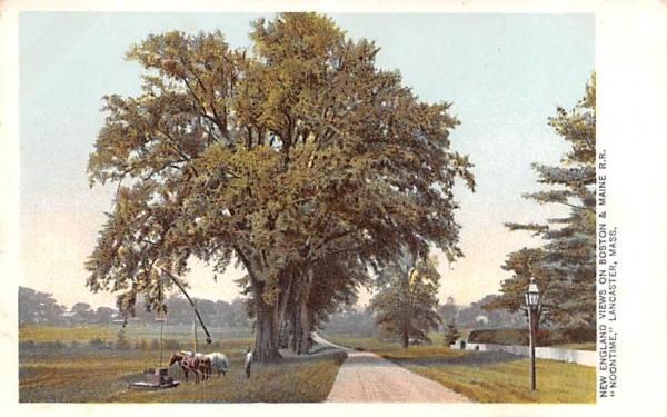 New England Views Lancaster, Massachusetts Postcard