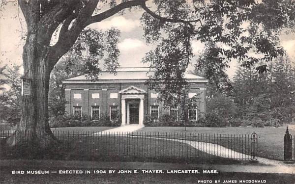 Bird Museum Lancaster, Massachusetts Postcard