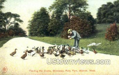 Middlesex Falls Park - Malden, Massachusetts MA Postcard