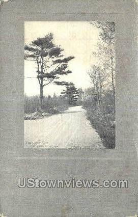 The Lone Pine - Milton, Massachusetts MA Postcard