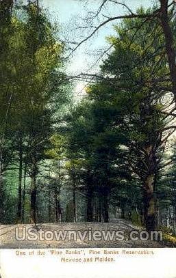 Pine Banks Reservation - Malden, Massachusetts MA Postcard