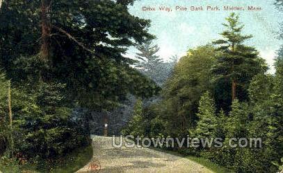 Drive Way, Pine Banks Park - Malden, Massachusetts MA Postcard