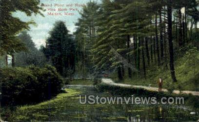 Road, Pine Banks Park - Malden, Massachusetts MA Postcard
