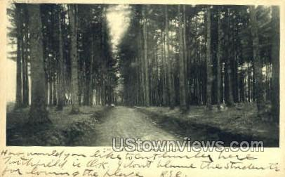 The Pines - Mt Hermon, Massachusetts MA Postcard