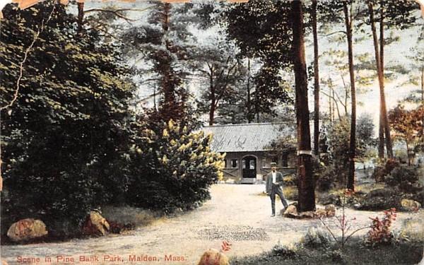 Scene in Pine Bank ParkMalden, Massachusetts Postcard