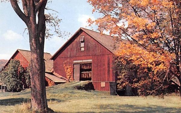 Tobacco Barn in Pioneer Valley Misc, Massachusetts Postcard