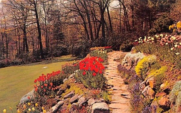 Rock Garden Misc, Massachusetts Postcard