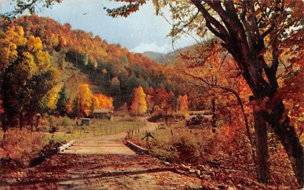 Autumn's Splendor Misc, Massachusetts Postcard