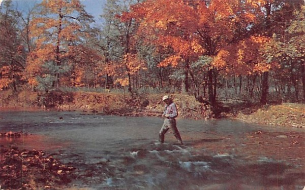 Laughed the brook for my delight through the day & through the night. Misc, Massachusetts Postcard