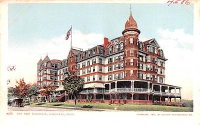 The New Magnolia Massachusetts Postcard