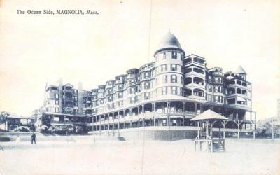 The Ocean Side Magnolia, Massachusetts Postcard