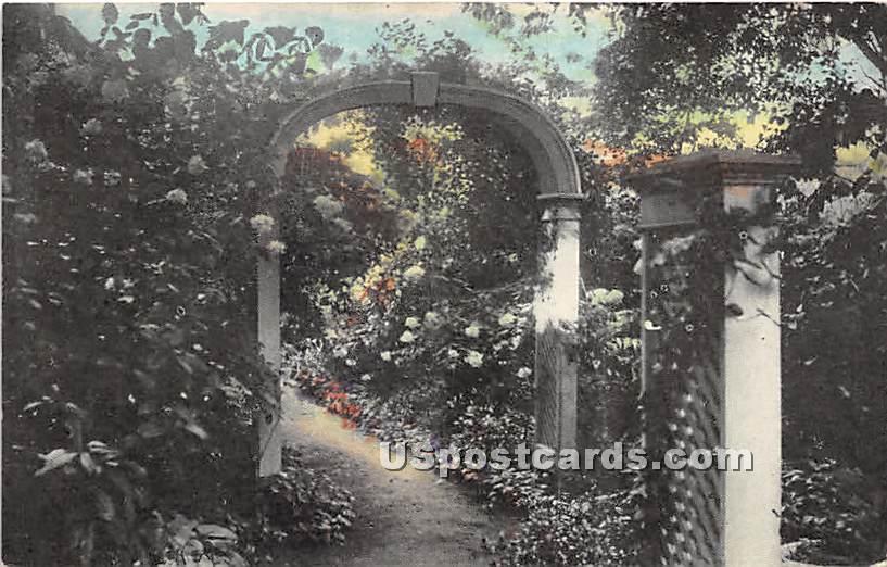 The Beautiful Osgood Hydrangea Garden - Misc, Massachusetts MA Postcard