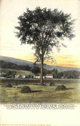 Site of Fort Massachusetts - North Adams Postcard