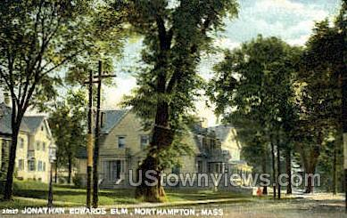 Jonathan Edwards Elm - Northampton, Massachusetts MA Postcard