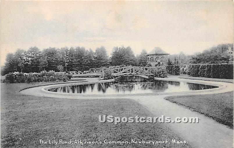 The Lily Pond in Atkinson's Common - Newburyport, Massachusetts MA Postcard