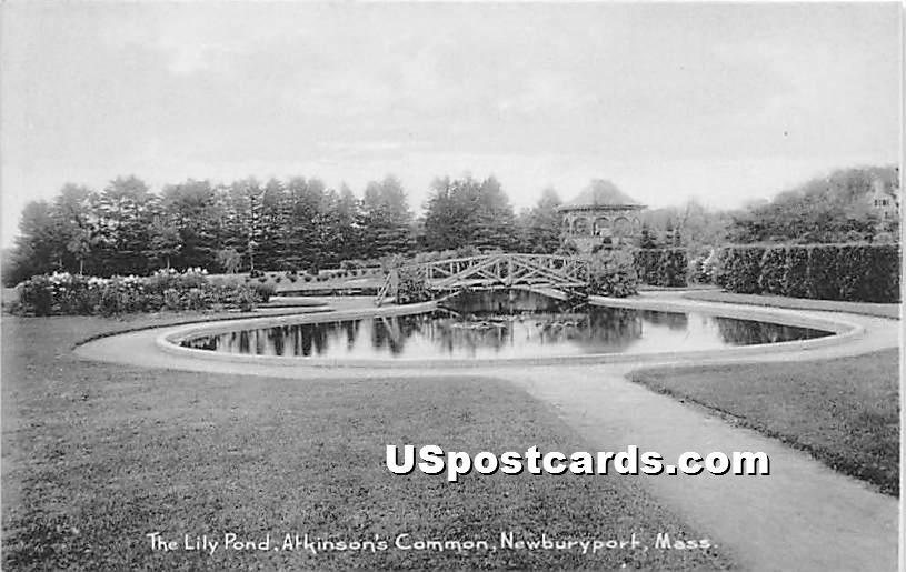 The Lily Pond in Atkinson's Common - Newburyport, Massachusetts MA Postcard