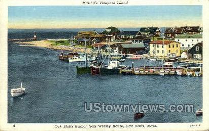 Harbor - Oak Bluffs, Massachusetts MA Postcard