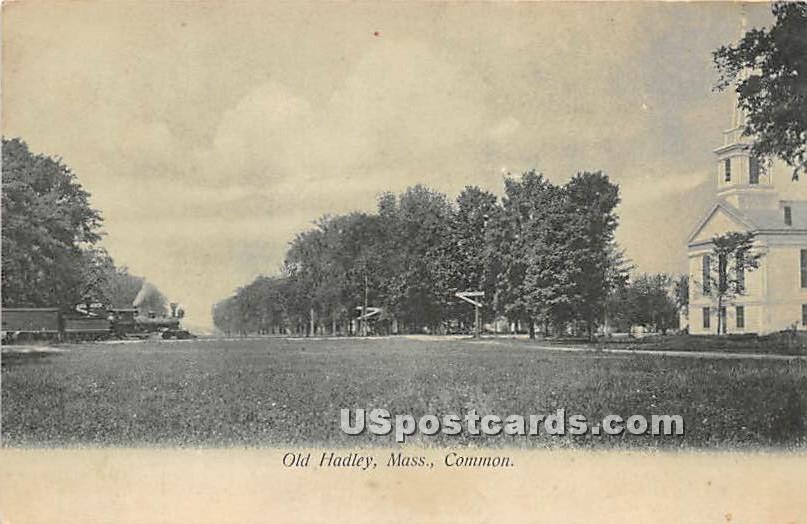 The Common - Old Hadley, Massachusetts MA Postcard