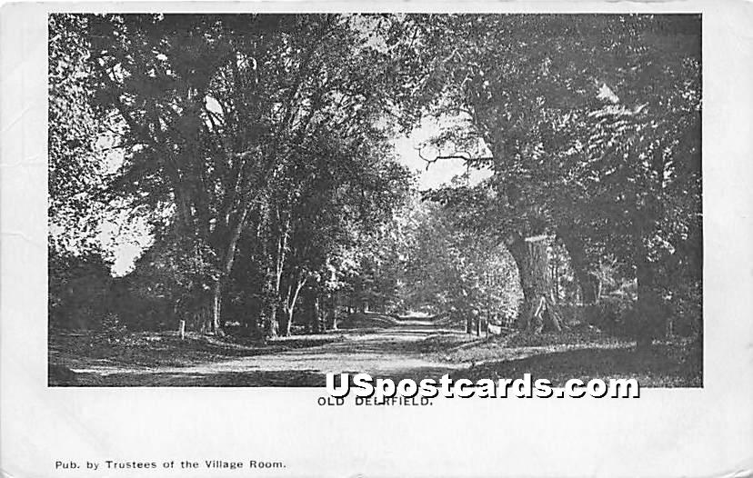 View of Trees - Old Deerfield, Massachusetts MA Postcard