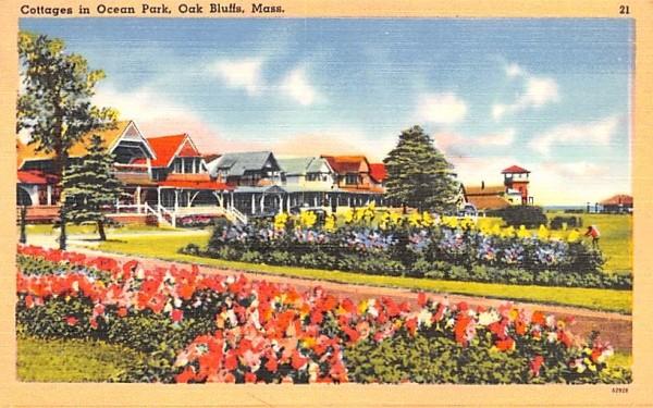 Cottages in Ocean Park Oak Bluffs, Massachusetts Postcard