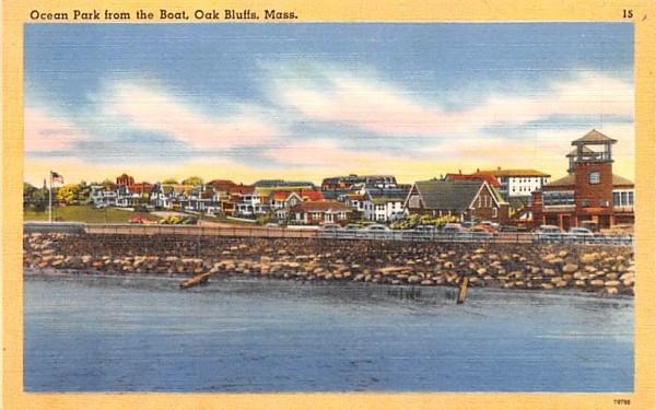 Ocean Park from the Boat Oak Bluffs, Massachusetts Postcard